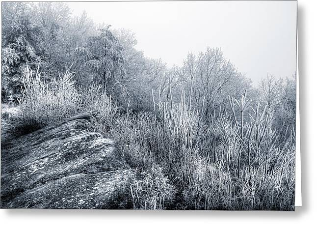 Frost At The Top Greeting Card by Mike Eingle