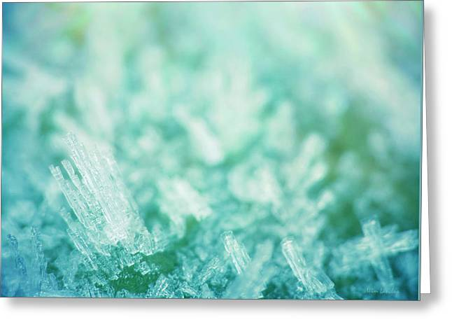 Frost Crystals Greeting Card by Wim Lanclus
