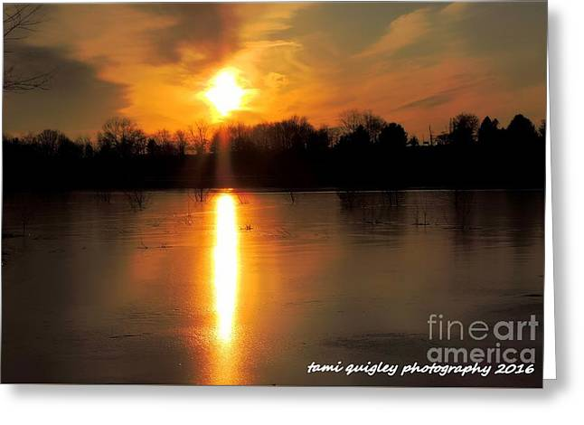 Frost Fire  Greeting Card