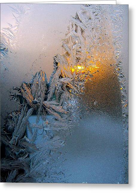 Frost Warning Greeting Card