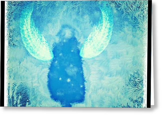 Frosted Angel Greeting Card