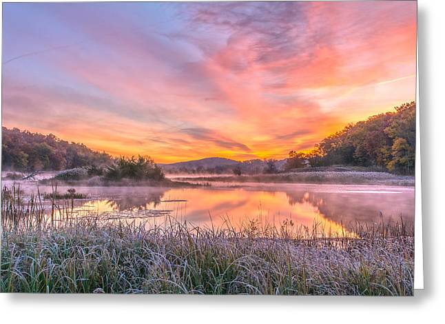 Frosted Dawn At The Wetlands Greeting Card