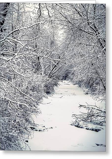 Frosted Feeder Greeting Card