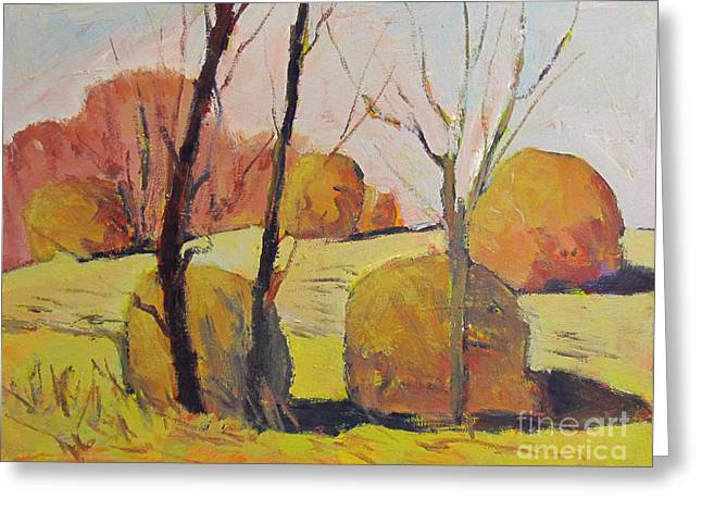 Frosted Haystacks Greeting Card by Charlie Spear