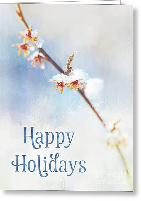 Frosted Witch Hazel Blossoms Holiday Card Greeting Card