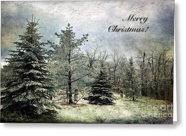 Frosty Christmas Card Greeting Card by Lois Bryan