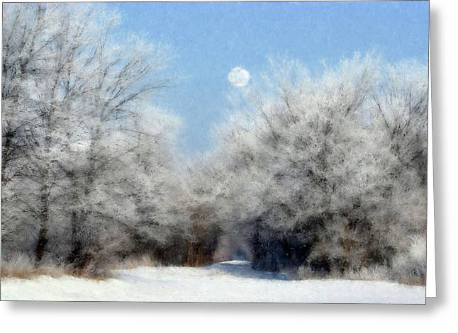Greeting Card featuring the photograph Frosty Moon Trail by John Hix