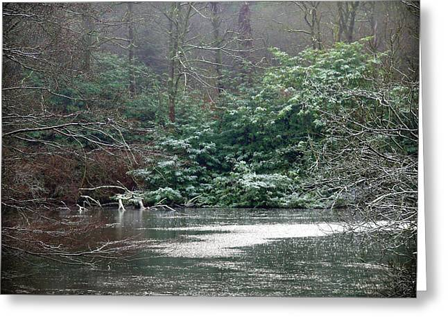 Greeting Card featuring the photograph Frosty Morning In Drum Manor by Colin Clarke