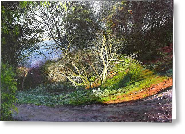Frosty Morning Near Nant Clwyd Greeting Card by Harry Robertson