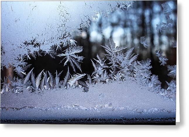 Frosty Morning Window Greeting Card by Liz Allyn