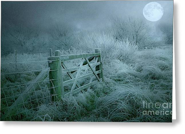 Frosty Night Greeting Card