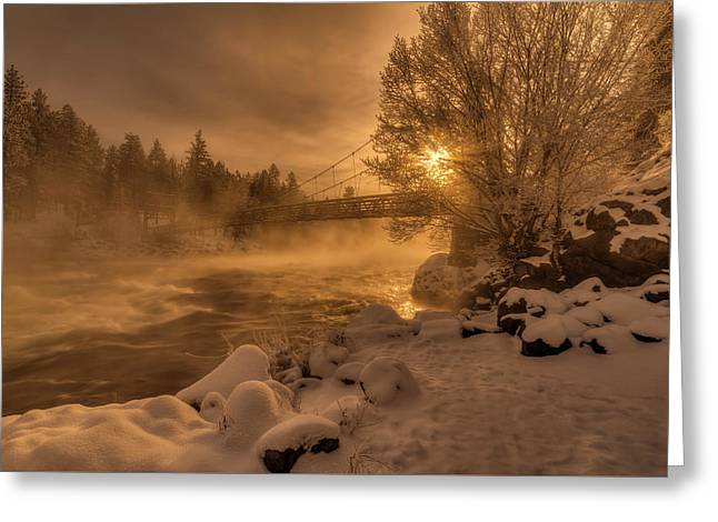 Frosty Riverside Greeting Card by Mark Kiver