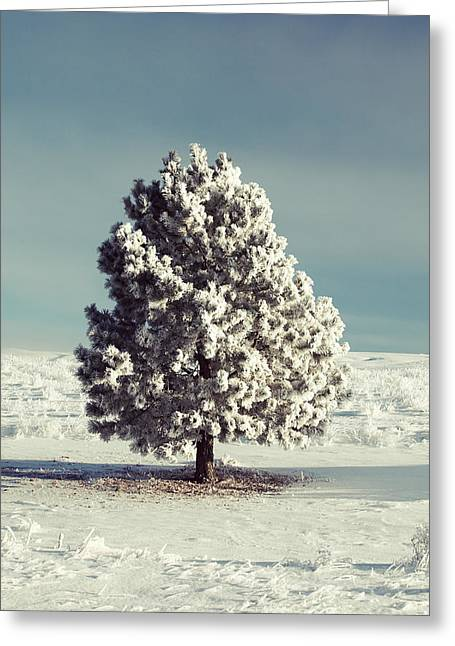 Frosty The Tree Greeting Card
