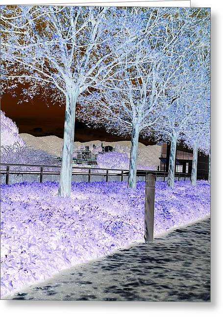 Frosty Trees At The Getty Greeting Card