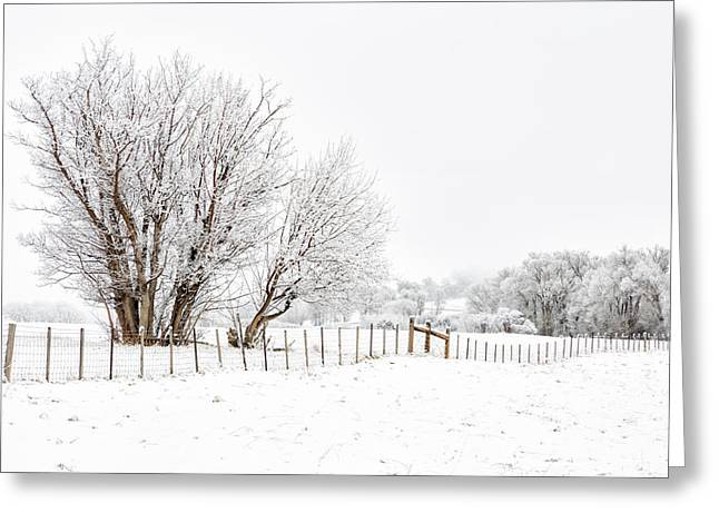 Frosty Winter Scene Greeting Card
