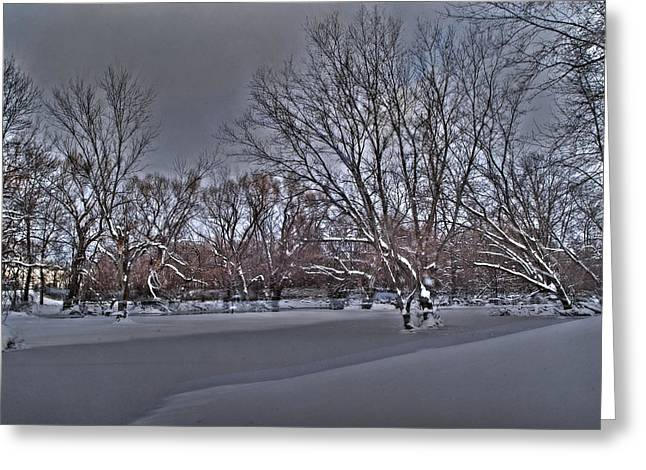 Frozen At The Creek's Edge Greeting Card by Steven Geer