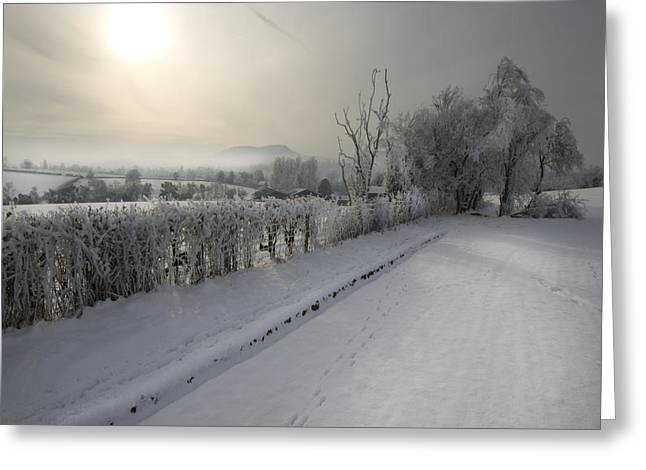 Frozen Britain Greeting Card by Angel  Tarantella