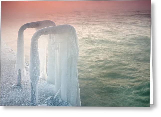 Frozen Greeting Card by Evgeni Dinev