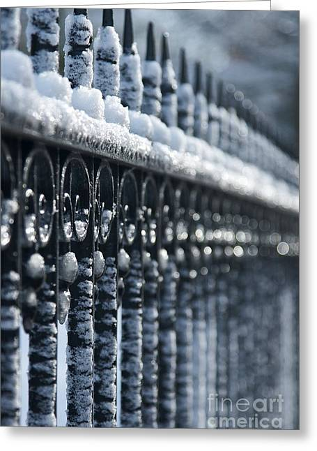 Frozen Fence 2 Greeting Card