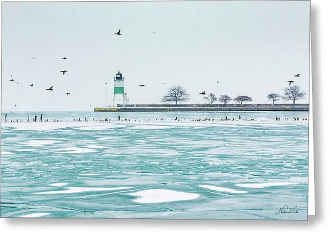 Frozen In Chicago Greeting Card