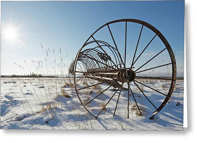 Frozen In Time. Greeting Card by Kelly Nelson