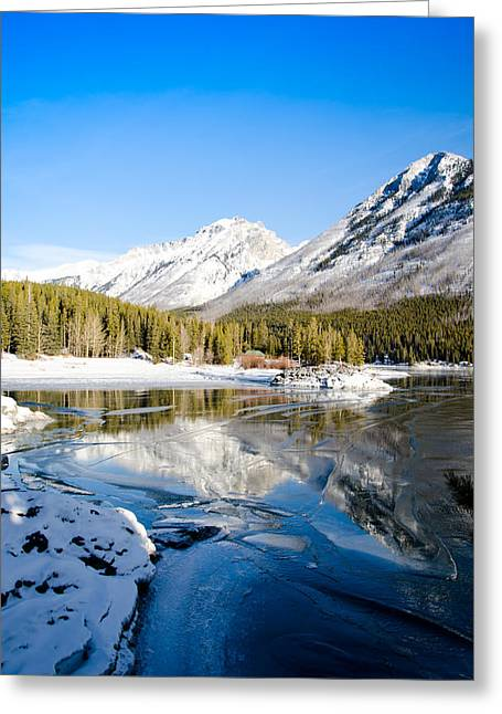 Frozen In Time Greeting Card by Manu Singh