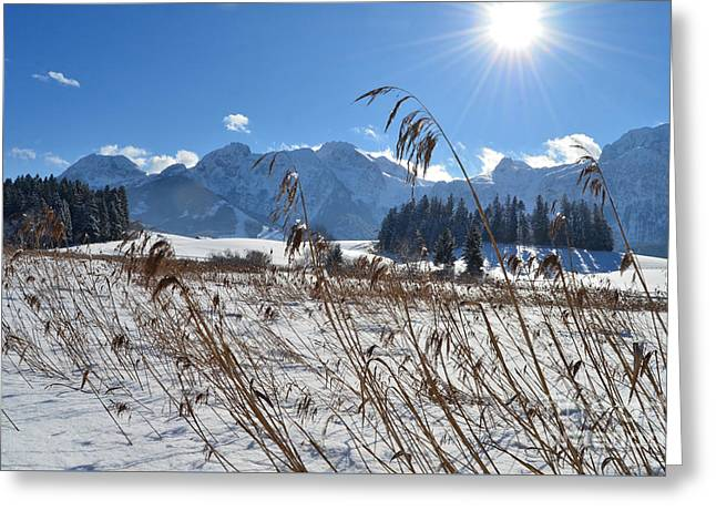 Frozen Lake And Mountains 2 Greeting Card by Sabine Jacobs