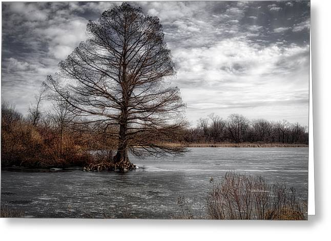 Greeting Card featuring the photograph Frozen Lake by Michael Colgate