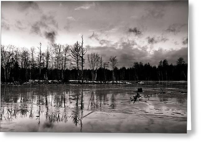 Frozen Landscape  Greeting Card by Edward Myers