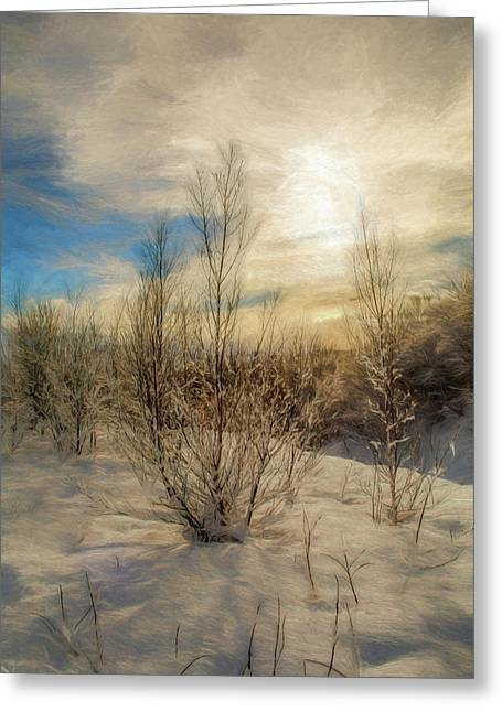 Frozen Landscape Greeting Card by Maria Coulson