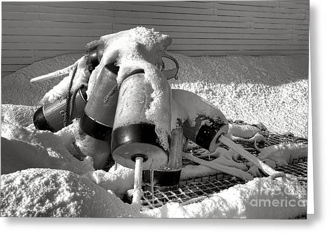 Frozen Lobster Trap Buoys In Snow Greeting Card by Olivier Le Queinec