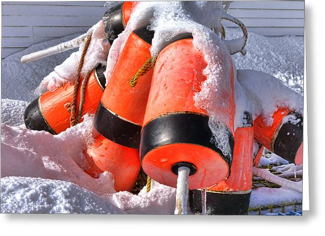 Frozen Lobster Trap Buoys In Winter Greeting Card by Olivier Le Queinec