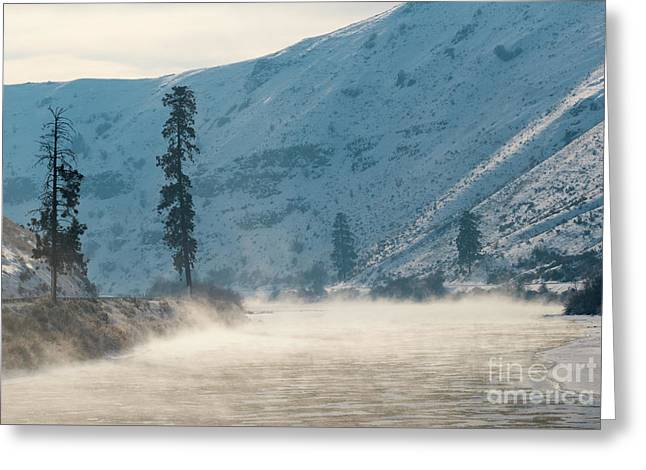 Frozen Mist Rising Greeting Card by Mike Dawson