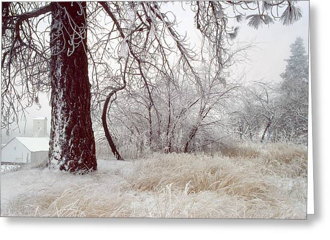 Frozen Morning In Palouse Greeting Card by Jerry McCollum