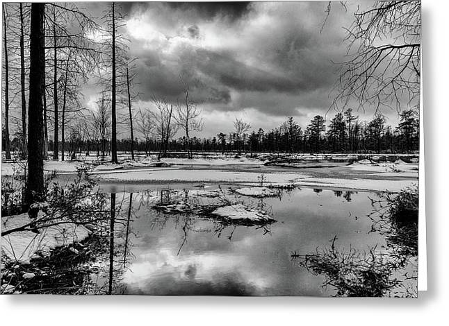 Greeting Card featuring the photograph Frozen Mullica River by Louis Dallara