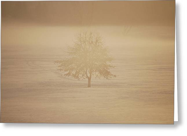 Frozen Natural Sepia Horizontal Greeting Card by Peter  McIntosh