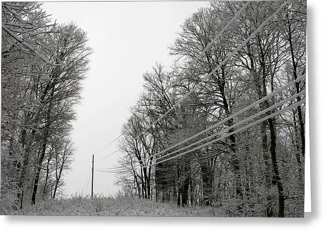 Frozen Power Lines Greeting Card by Martie DAndrea