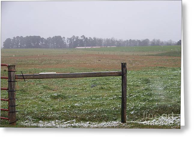 Frozen Rainy Field Greeting Card by Kevin Croitz
