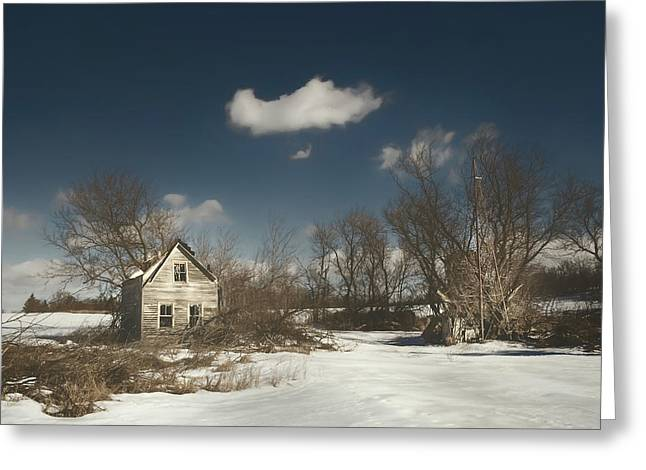 Frozen Stillness Greeting Card by Scott Norris