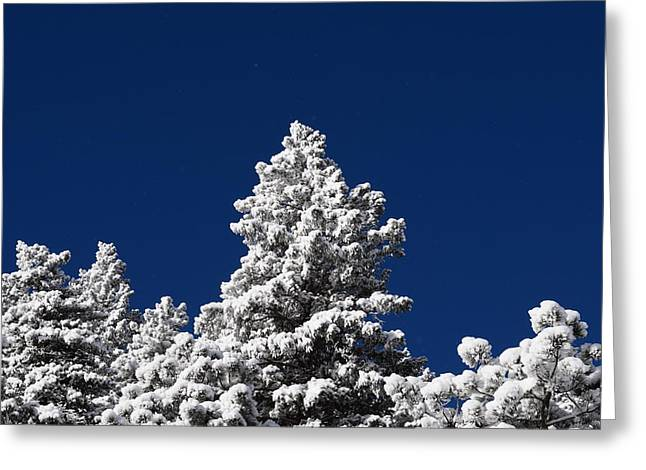 Frozen Tranquility Ute Pass Cos Co Greeting Card