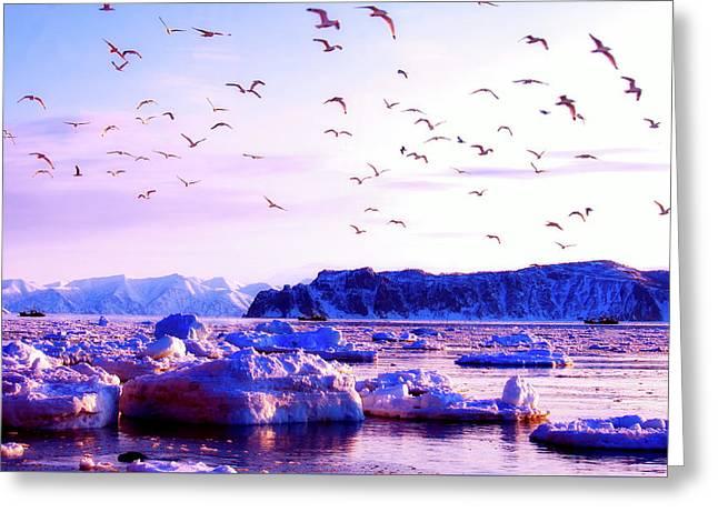 Frozen Vista - Kamchatka Greeting Card by Natalia Kollegova