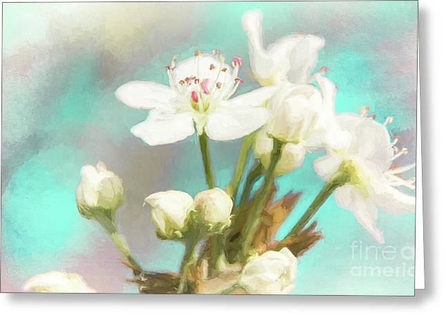 Fruit Blossom Painting Greeting Card