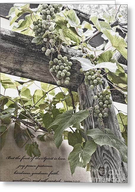 Fruit Of The Spirit Greeting Card by Diane Macdonald