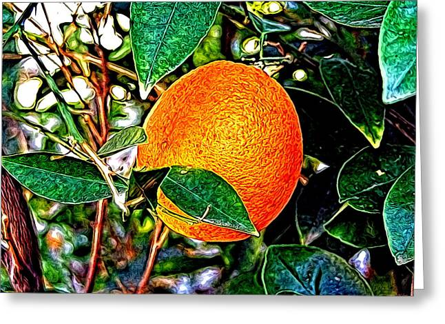 Greeting Card featuring the photograph Fruit - The Orange by Glenn McCarthy Art