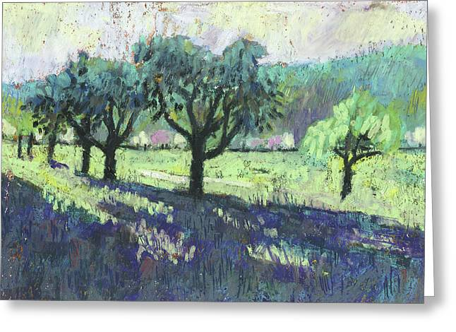Fruit Trees, Spring Landscape Greeting Card by Martin Stankewitz