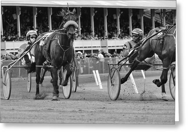 Fryburg Races Greeting Card
