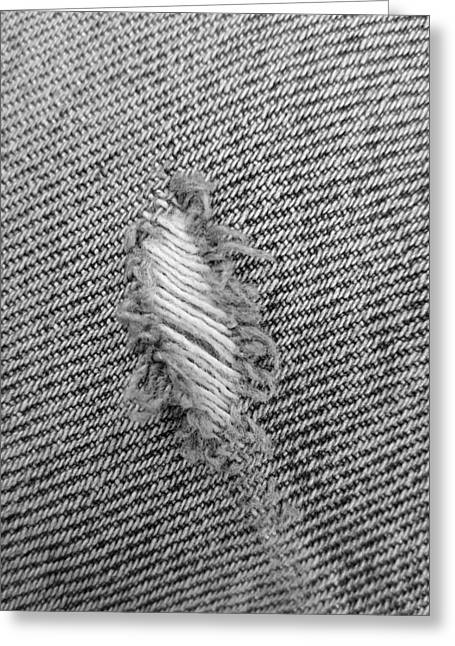 Fryed Jeans In B W Greeting Card