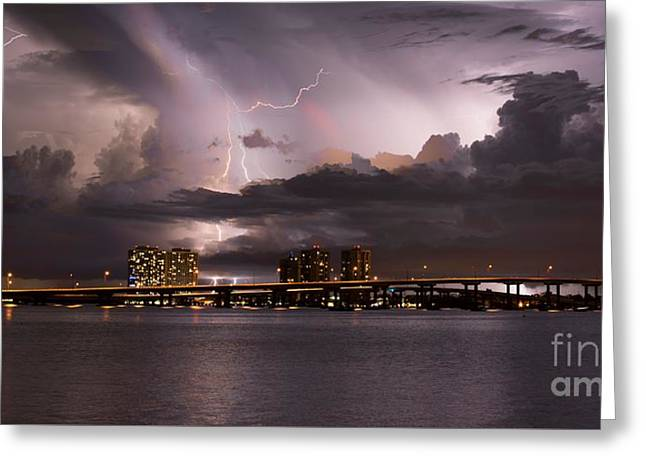 Ft Myers Nights Greeting Card