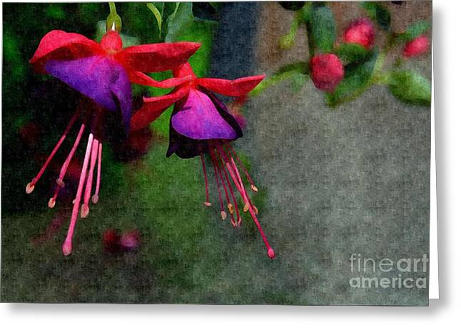 Fuchsia's Beating As One Together -silk Edit Greeting Card