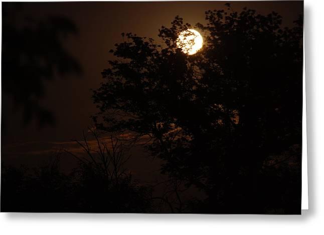 Full Moon 2 Greeting Card by Lisa Gabrius
